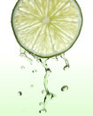 Fresh lime slice with juice drops Royalty Free Stock Photo