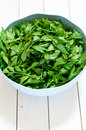 Fresh lovage in a plastic bowl Royalty Free Stock Image