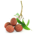 Fresh lychees on white Stock Photography