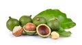 Fresh Macadamia Nut On White B...