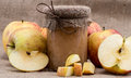 Fresh made applesauce with apples Stock Images