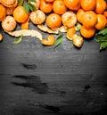 Fresh mandarin with leaves. Royalty Free Stock Photo