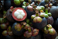 Fresh mangosteen for sell in market Stock Photos