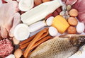 Fresh meat and dairy products. Stock Images