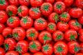Fresh mellow tomato background into the market Royalty Free Stock Photography