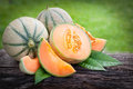 Fresh melons cantaloupe on wooden ground Stock Photos