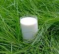 Fresh milk Stock Photo
