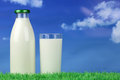 Fresh milk in a bottle and in a glass on meadow with copyspace Royalty Free Stock Photography