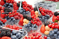 Fresh mixed berries for sale Stock Image