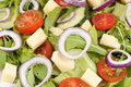 Fresh mixed salad with cheese Royalty Free Stock Photo