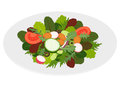 Fresh mixed salad leaves with vegetables Stock Images