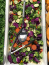 Fresh Mixed Vegetable Salad Royalty Free Stock Photo