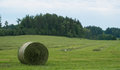 Fresh mown hay being baled Royalty Free Stock Photo