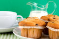Fresh muffins on the table Royalty Free Stock Photo