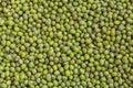 Fresh mung bean grams close up view Stock Photo