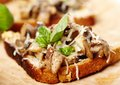 Fresh mushroom bruschettas on a wooden board Royalty Free Stock Photo
