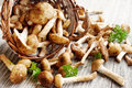Fresh mushrooms armillaria mellea placed on wooden board and basket Stock Image