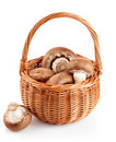 Fresh mushrooms in a basket Royalty Free Stock Photo