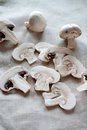 Fresh mushrooms close up on linen fabric and wooden background and cut in slices Stock Image
