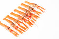 Fresh Norway lobsters on white background. Royalty Free Stock Photo