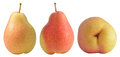 Fresh oceania pears closeup of with three side isolated on white Stock Photos