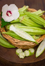 Fresh okra in the basket Royalty Free Stock Photo