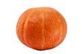 Fresh orange pumpkin isolated on white background stock photo Royalty Free Stock Photography