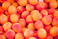 Fresh orange red apricots peaches macro closeup on market Royalty Free Stock Photo