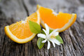 Fresh oranges Royalty Free Stock Photography