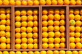 Fresh oranges in the box Stock Photo
