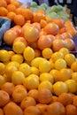 Fresh oranges and lemons Royalty Free Stock Photo