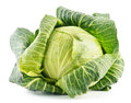 Fresh organic cabbage on white background Stock Photography