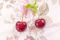 Fresh organic cherries on textile background Stock Photos