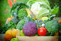 Fresh organic food vegetables and fruits Royalty Free Stock Images