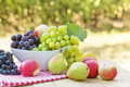 Fresh organic fruits in bowl on the table Stock Photo