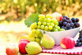 Fresh organic fruits in bowl on the table Royalty Free Stock Images