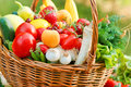 Fresh organic fruits and vegetables wicker basket is full of Stock Photos