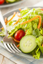 Fresh organic green salad with carrots and cucumbers Royalty Free Stock Photography