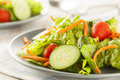 Fresh organic green salad with carrots and cucumbers Royalty Free Stock Images
