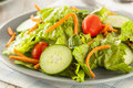 Fresh organic green salad with carrots and cucumbers Stock Image