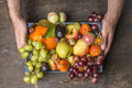Fresh Organic Harvest  Fruits ...
