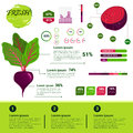 Fresh Organic Infographics Natural Vagetables Growth, Agriculture And Farming