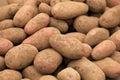 Fresh organic potatoes at farmers market, Chile Royalty Free Stock Photo