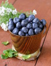 Fresh organic ripe blueberries in a wooden bowl Royalty Free Stock Photos
