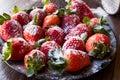 Fresh Organic Ripe Strawberries with Powdered Sugar on Black Pla Royalty Free Stock Photo