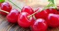 Fresh organic sour cherry Royalty Free Stock Photo