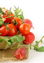 Fresh organic tomatoes and cucumbers in a basket Royalty Free Stock Photo