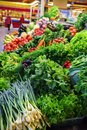 stock image of  Fresh and organic vegetables at farmers market: raddish, tomatoes, dill, salad, green onoins, garlic