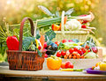 Fresh organic vegetables on a table in wicker basket Royalty Free Stock Photography