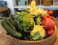 Fresh organic vegetables in wicker basket Royalty Free Stock Photo